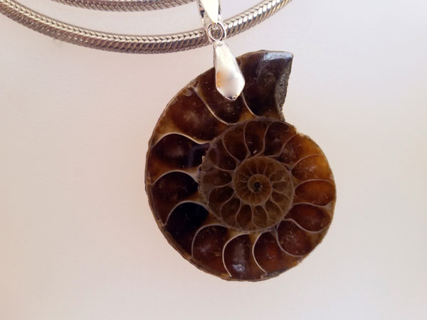 Ammonite and Sterling silver pendant.. Foto 1