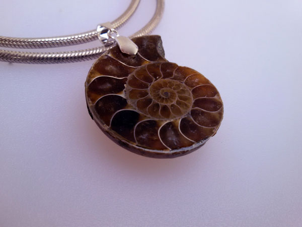 Ammonite and Sterling silver pendant.. Foto 2