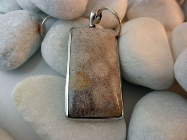 Sterling Silver and Fossil pendant.. Foto 2