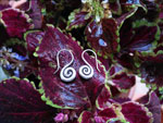 "Ethnic silver earrings ""karen"".. Ref. MIX"
